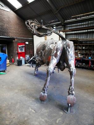 bull rear